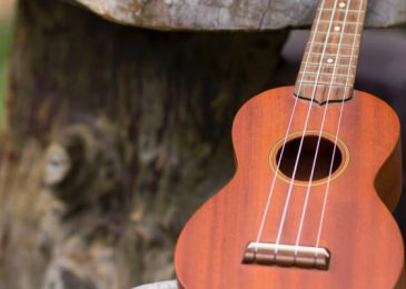 Best concert ukulele for travel and guitar musical gifts for children