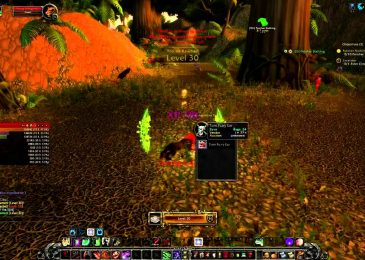 The 'magical' way to quickly level in World of Warcraft